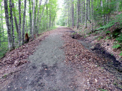 repaired trail