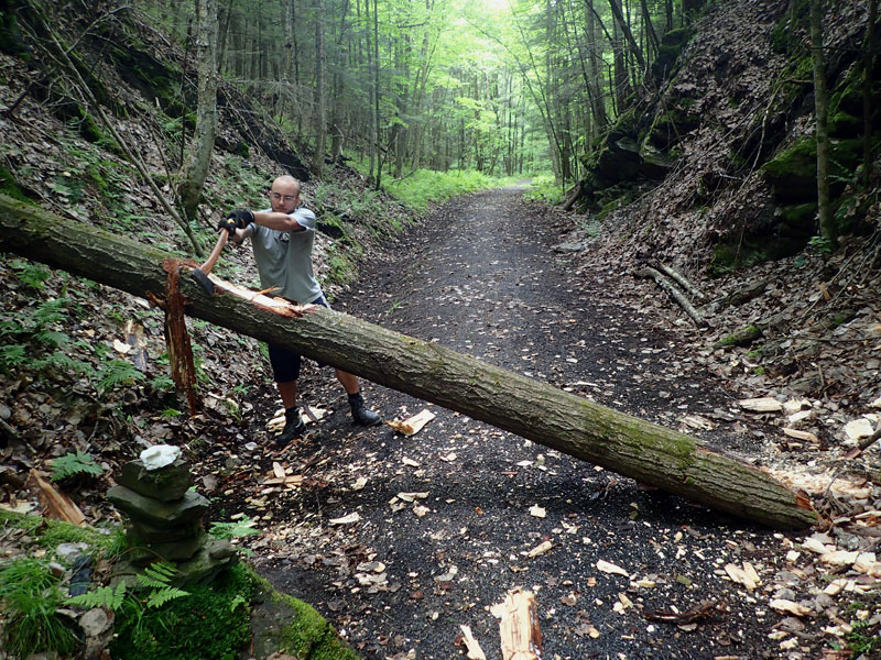 Americorps axes blowdown tree